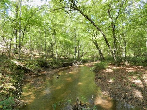 114 Ac Investment / Recreation Trac : Sparta : Hancock County : Georgia