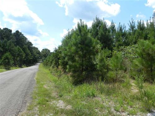 Beautiful 181 Acre Parcel Near Sel : Selmer : McNairy County : Tennessee