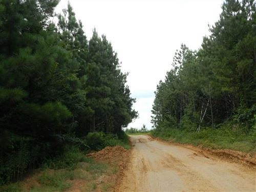 172 Acres in Tippah Hills : Booneville : Prentiss County : Mississippi