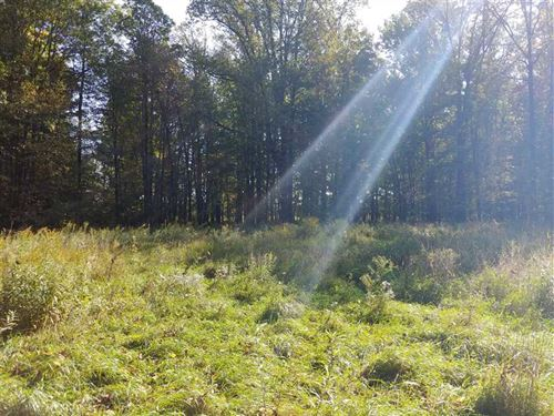 80 Acres Hayner Rd, Branch County : Union City : Branch County : Michigan