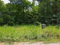 Lot River Access Mammoth Spring : Mammoth Spring : Fulton County : Arkansas