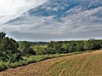 Buck Branch Farm : Nebo : Pike County : Illinois