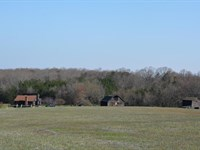 Pristine Property : Pamplin : Prince Edward County : Virginia