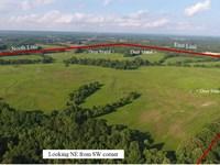 Crp Income -Deer, Turkey, & Quail : Ko Ko : Haywood County : Tennessee