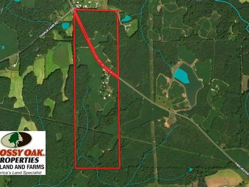 Reduced, 126 Acres of Farm And Ti : Roxboro : Person County : North Carolina