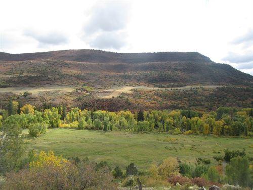 Vacant Land Western Colorado : Collbran : Mesa County : Colorado