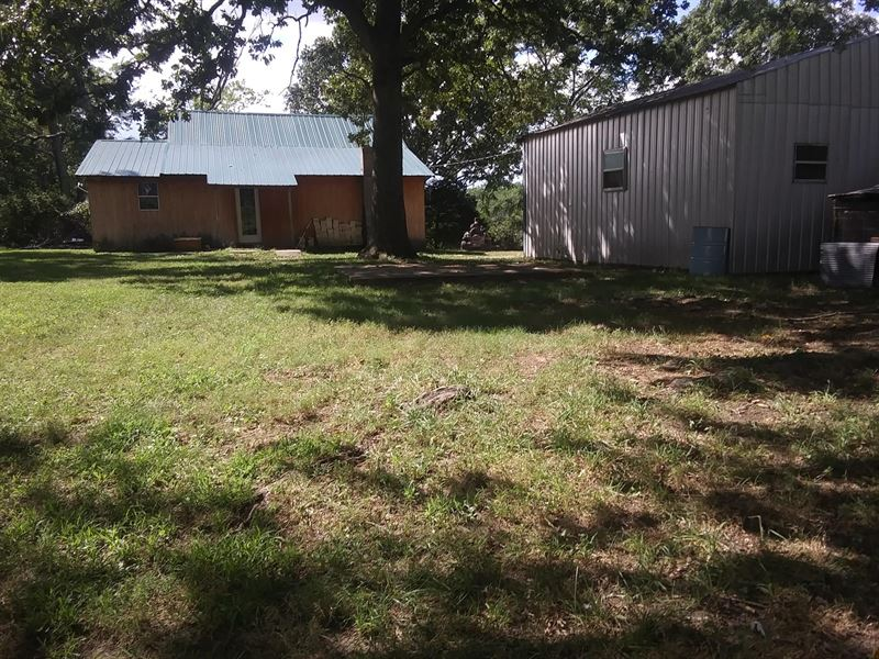 Hobby Farm, Country Home, 2 Ponds : Mountain View : Howell County : Missouri