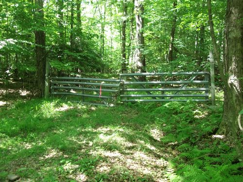 Hunting Paradise : Deposit : Broome County : New York
