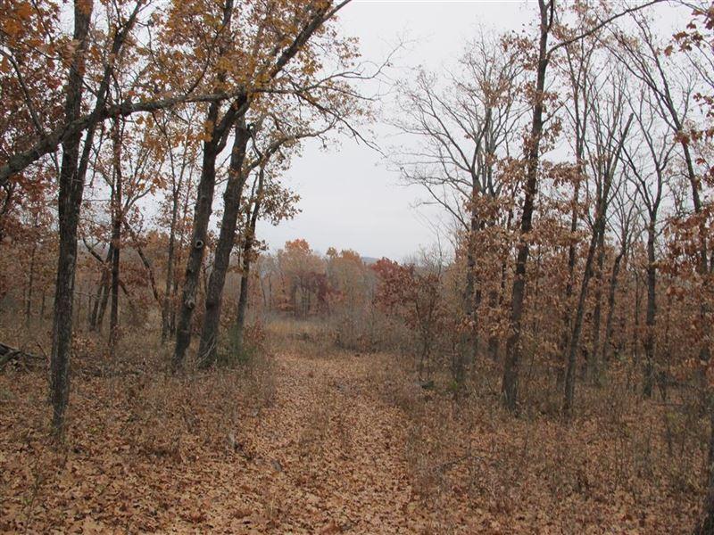 60 Acres +/ : Bunch : Cherokee County : Oklahoma