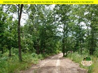Hunt Or Homestead, Near River : Jadwin : Dent County : Missouri