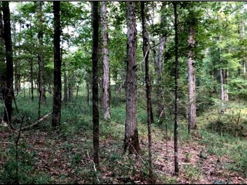 115 Acres In Holmes County In Lexin : Lexington : Holmes County : Mississippi