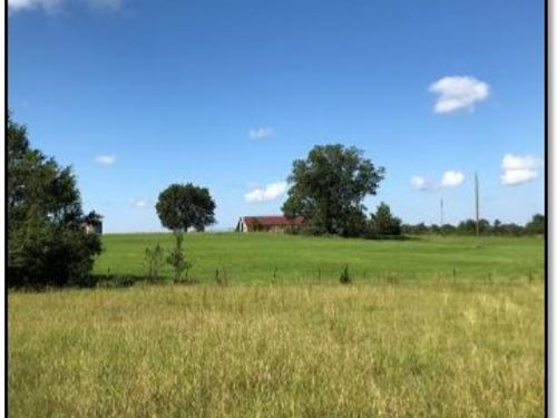 240 Acres In Holmes County In Lexin : Lexington : Holmes County : Mississippi