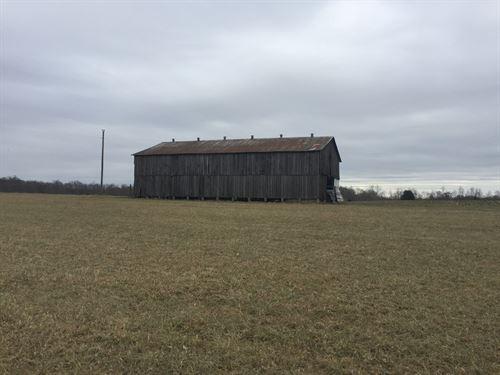 70 Ac, Farm, Pond, Barn, Pasture : Liberty : Casey County : Kentucky