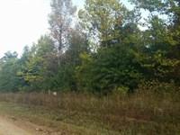 Recreation & Hunting Land Hugo : Hugo : Choctaw County : Oklahoma