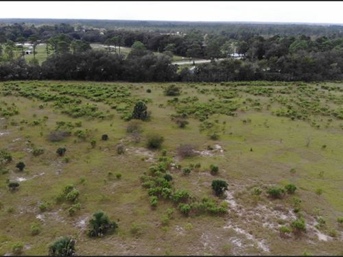 Living Colors Ranch, 71 Acres : Eustis : Lake County : Florida