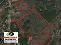 74.8 Acres of Development OR Mini : Sanford : Lee County : North Carolina