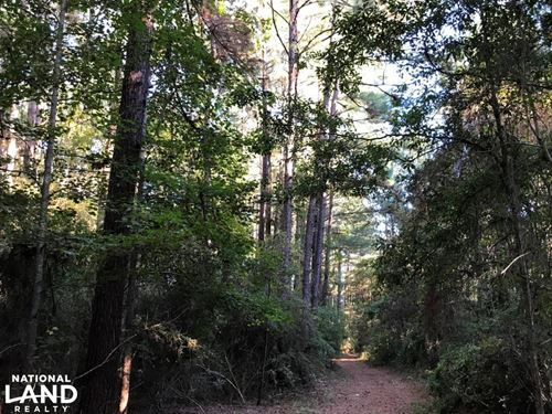 Oloh, Bellevue Residential Tract : Sumrall : Lamar County : Mississippi