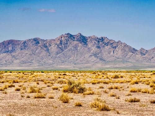 Homesite Bordering Public Land : Deming : Luna County : New Mexico