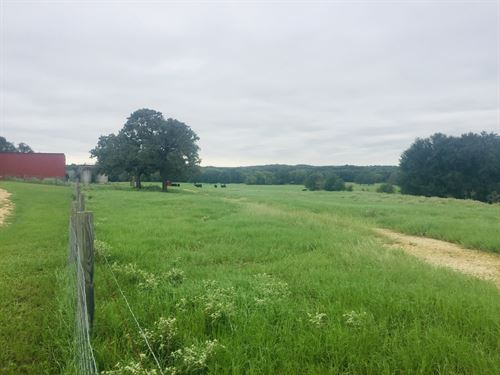 Nice Tract With Homes And Barn : Milano : Milam County : Texas