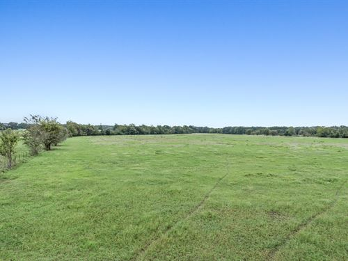 Fm 1428 Tract 2 : Madisonville : Madison County : Texas