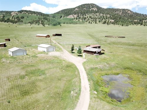 Mountain Hunting, Cattle, Horse : Westcliffe : Custer County : Colorado