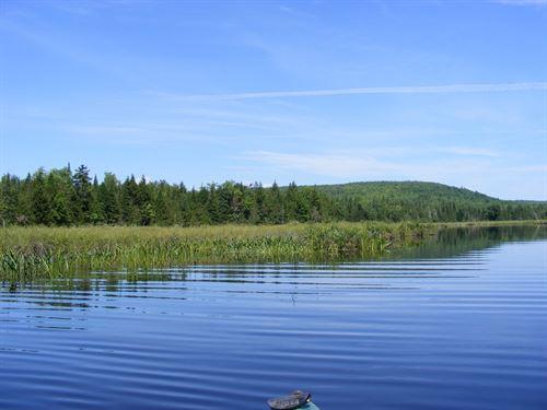 393 Acres Maine Land Oakfield, ME : Oakfield : Aroostook County : Maine