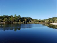 102 Acres Bordering Indian Lake : Anthony : Marion County : Florida