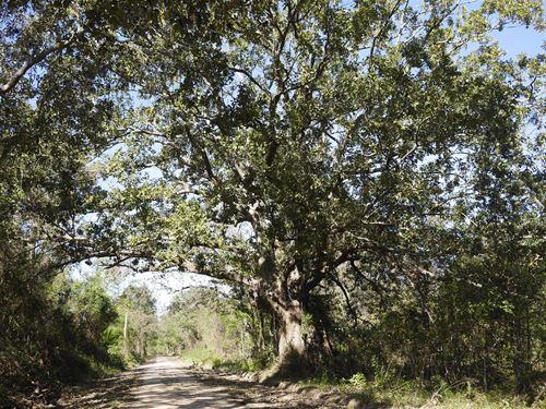 Sonny Allen Road : Millen : Jenkins County : Georgia