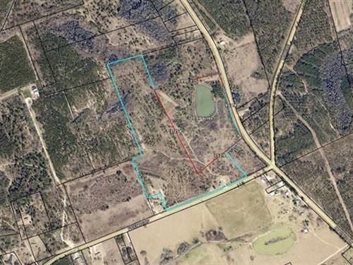 20 Acre Land Lot Screven County, GA : Sylvania : Screven County : Georgia