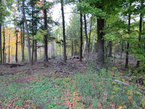 Awesome Acres For Sale : Menasha : Manitowoc County : Wisconsin