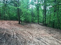 45.20 Surveyed Acres of Residentia : Harriet : Searcy County : Arkansas
