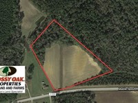 10 Acres of Farm And Residential : Clarkton : Columbus County : North Carolina