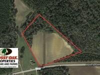 10 Acres of Farm And Residential : Clarkton : Columbus County : North Carolina