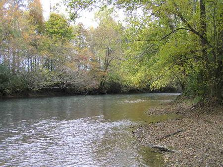 River, Meadow, Views,  22 Acres : Dunlap : Sequatchie County : Tennessee
