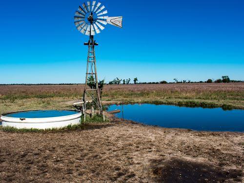 Quivira Sportsman's Paradise Ranch : Alden : Rice County : Kansas