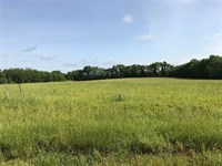Awseome Hunting Property in Bates : Butler : Bates County : Missouri