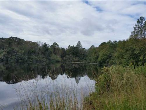 88 Acres With 10 Acre Big Bass Pond : Biscoe : Montgomery County : North Carolina