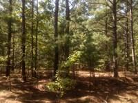 Secluded Homesite : Sanford : Harnett County : North Carolina