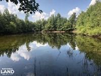 Gifford 28 AC Hunting/Farming/Recre : Gifford : Hampton County : South Carolina