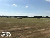 11 Acres Near Mabank, Pasture, Home : Mabank : Kaufman County : Texas