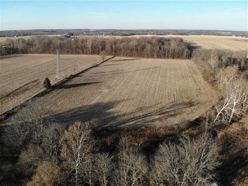 20 Acres With 14 Productive Tillab : Greensburg : Decatur County : Indiana
