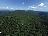 Private Wilderness With Long Range : Black Mountain : Buncombe County : North Carolina