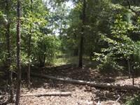 Summertown Country Estates Lot 14 : Summertown : Emanuel County : Georgia