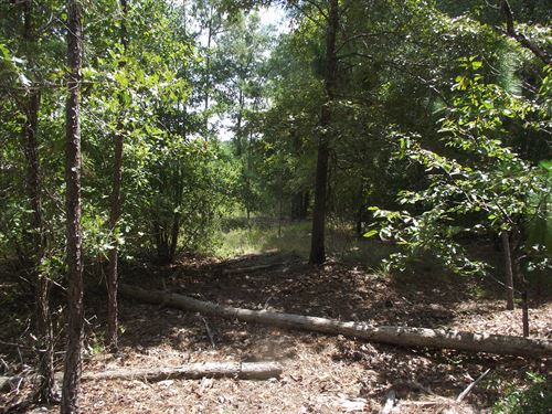Summertown Country Estates Lot 14 : Summertown : Emanuel County : Georgia