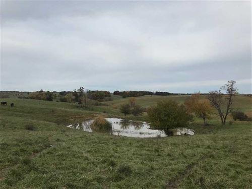 149 Acre Pasture Farm in Adair Cou : Novinger : Adair County : Missouri