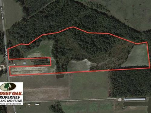 33 Acres of Farm And Timber Land : Pink Hill : Duplin County : North Carolina