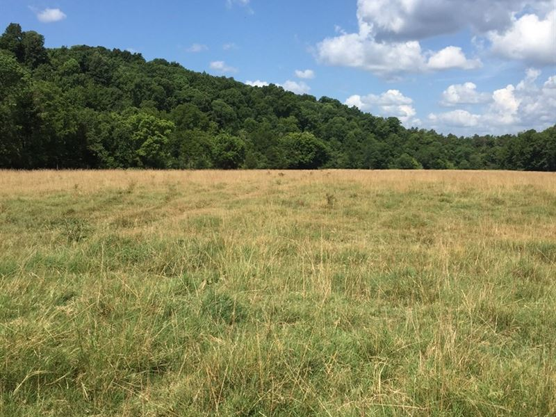 Arkansas Pasture Land Marshall, AR : Marshall : Searcy County : Arkansas