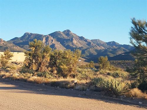 Great 8+ Acres Homes Only Area : Kingman : Mohave County : Arizona