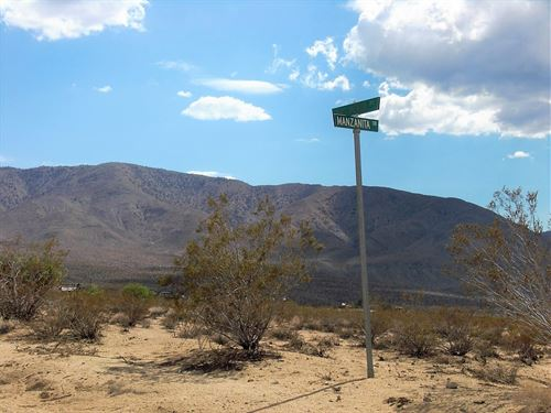 Nice Lot, Power, Ez Access, $195/Mo : Johnson Valley : San Bernardino County : California