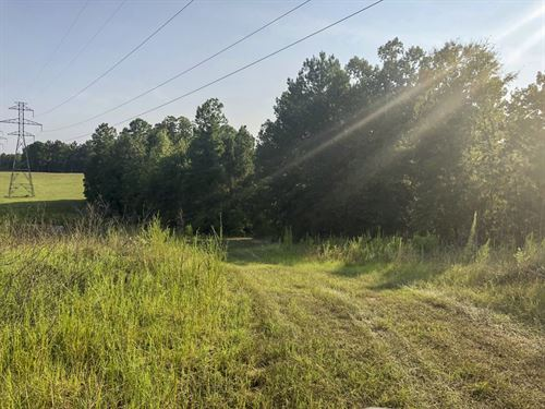 251 Acres Lightfoot Road : Lufkin : Angelina County : Texas